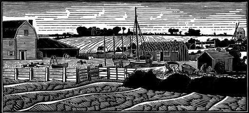William Stuttle's Yard
