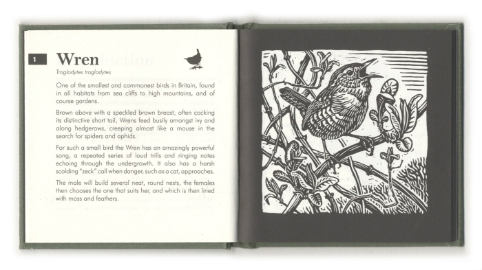gardenbirdspage